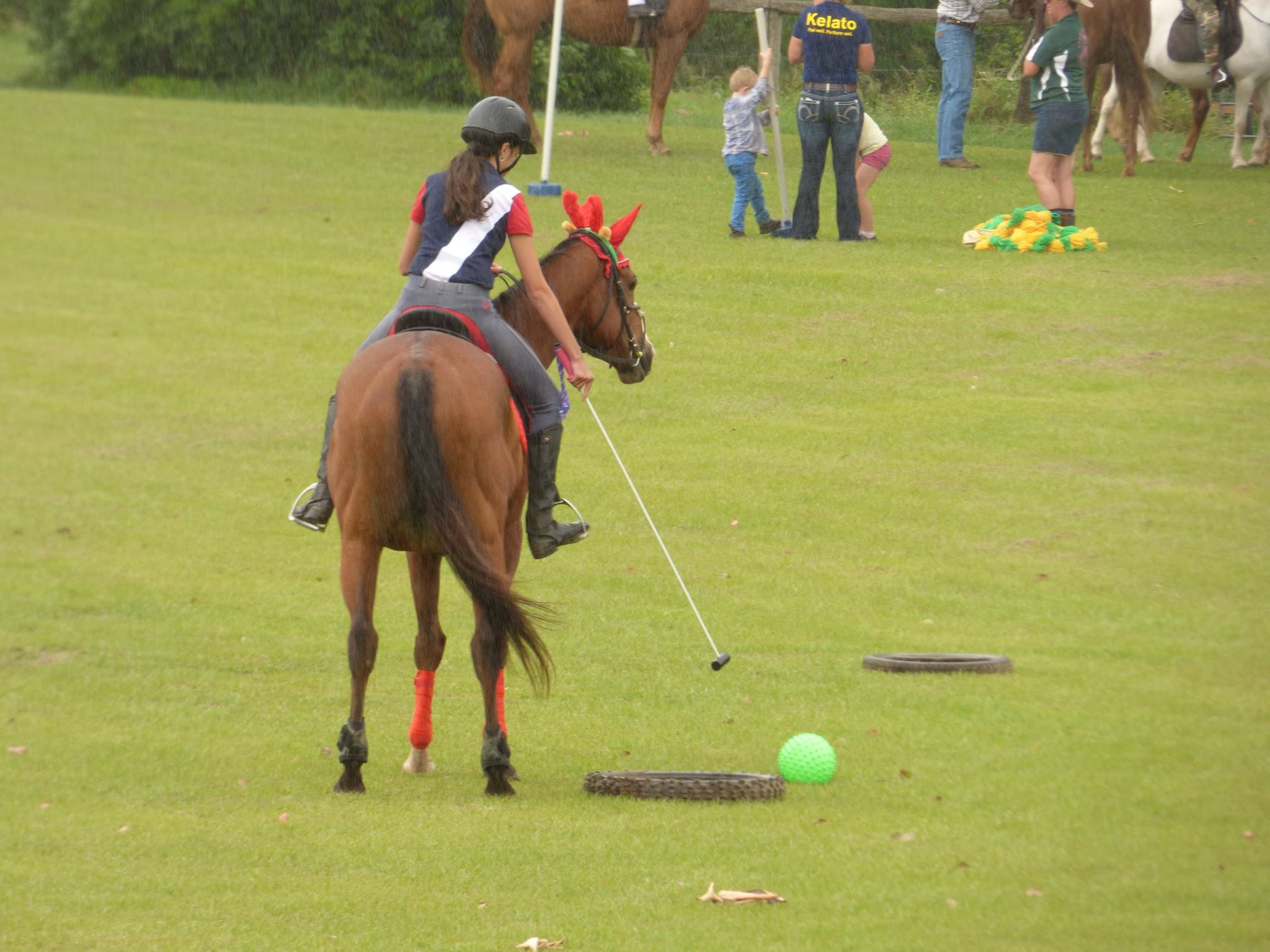 Gympie pony club rallys